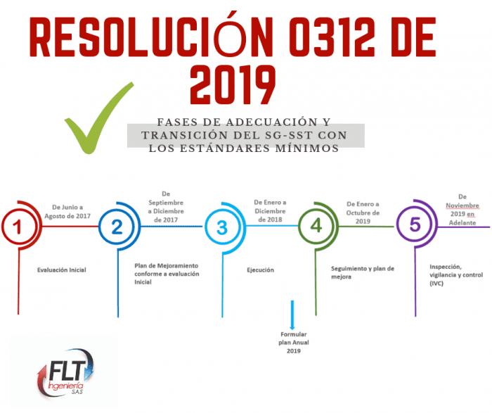 resolucion0312 de 2019